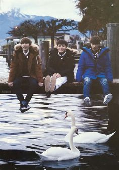 Eunhyuk, Leeteuk, Donghae I think, and two swans.. I don't know their names..