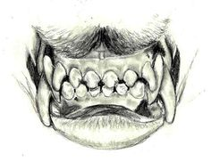 Canine teeth front view by *celestriastars on deviantART
