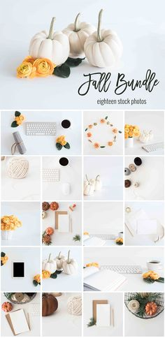 Thousands of fall and winter design resources to last your through Christmas :)
