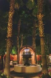 Boojum Tree's Hidden Gardens in Phoenix - Annie Gerber Photography Tree Wedding, Wedding Fun, Hidden Garden, Photo Tree, Annie, Phoenix, Photo Galleries, Gardens, Gallery