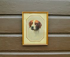 Dog Print, G B Fox Saint Bernard Print, The Challenger Dog Print St Bernard Dogs, Cottage Art, Fox Print, Teacup Chihuahua, Labrador Retriever Dog, Bull Terrier Dog, Bernese Mountain, Mountain Dogs, Training Tips