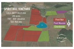 Spirit Hill Vineyard