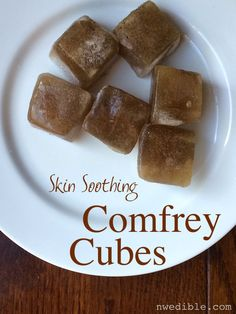 DIY Skin Soothing Comfrey Cubes - stop sunburn from ruining your summer!