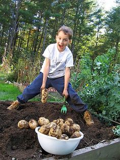 ... FULL ARTICLE @ http://wowthatsmygarden.com/landscaping-tips-to-make-you-look-like-a-pro/