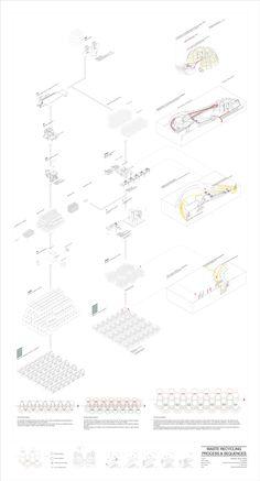 AA Diploma 2 Norine Chu. Tutor: Didier Faustino and Kostas Grigoriadis