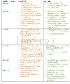 stadiile-atentiei-2