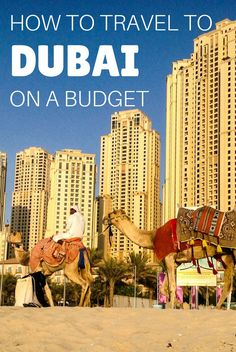 In this guide you will have tips on how to save on activities, accommodation, food, transport and alcohol to travel to Dubai on a budget