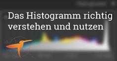 Lerne wie man das Histogramm in Deiner Kamera und mit Lightroom richtig nutzt.