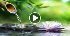Relaxing Songs, Relaxing Sleep Music, Relaxation Meditation, Music For Relaxation, Sleep Meditation Music, Sleeping Songs, Deep Sleep Music, Music For Studying, Calming Music