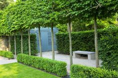Formal Structural Garden | Stone bench amongst clipped hedges | Charlotte Rowe Garden Design