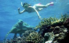 Snorkel and sailing adventure - short excursions