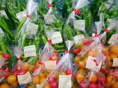 Chili Pepper and Mini Tomato #farm #harvest