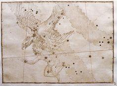 Nell'anno 132 della nostra era l'imperatore Adriano colloca in cielo la costellazione di #Antinoo...  trasportato in volo dall'aquila, non deve essere confusa con la figura di Ganimede, che, nella mitologia greca, viene rapito da un'aquila per ordine di Zeus.