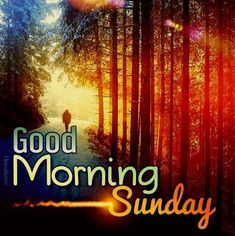 Happy Sunday Images, Good Morning Sunday Images, Sunday Morning Quotes, Sunday Wishes, Morning Quotes Images, Good Morning Greetings, Morning Prayers, Morning Pictures, Night Quotes
