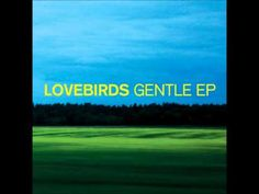 Lovebirds - Gentle