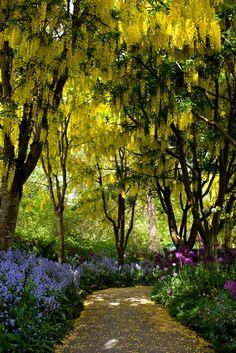 cornersoftheworld: VanDusen Garden, Vancouver, BC | by Junnn