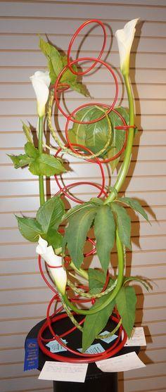 "Linda Ragland won First Place for her mono-botanic, creative design for the Garden Club of Ellijay's Flower Show, ""Honoring America's Women"""