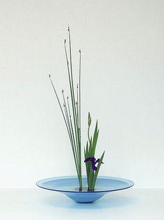 Ikebana by Sensyou