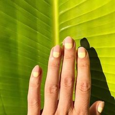 Coveting this half dip mani. #oliveyourmani @kasianajdek