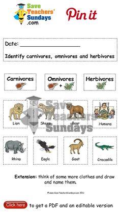 herbivore carnivore omnivore jj herbivore carnivore animal worksheets animal classification. Black Bedroom Furniture Sets. Home Design Ideas