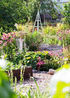 Kukat ja koristeet kuuluvat potageriin! Plants, Inspiration, Gardens, Pots, Biblical Inspiration, Plant, Inspirational, Planets, Inhalation