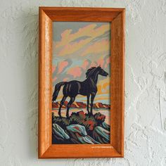 Framed Horse Paint By Numbers