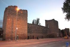 Muralla de Santo Domingo de la Calzada El recinto amurallado de Santo Domingo de la Calzada es uno de los más importantes de la Comunidad Autónoma de La Rioja, la primera construcción data del siglo XIII