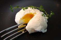 Poached Eggs, from Mastering the Art of French Cooking by Julia Child ~ this is the very first 'recipe' I ever tried from that daunting book and, damn, if that wasn't the best egg I ever made for myself. This is a lovely photo of just such a poached egg...so I 'poached' it - ha!