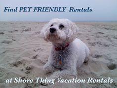 ... NJ Pet Friendly Vacation Rentals on Pinterest  Vacation rentals, Pets