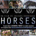 Petición · Al Presidente del Festival de Cine Internacional Jose Antonio Martínez Suarez: Que proyecten Horses en el Festival de Cine de Mar del Plata · Change.org