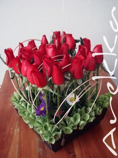 Caja + Rosas + Médula