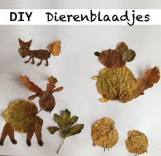 Fall Crafts For Kids, Diy For Kids, Crafts To Make, Arts And Crafts, Kid Crafts, School Bo, Nature Crafts, Craft Materials, Toddler Preschool
