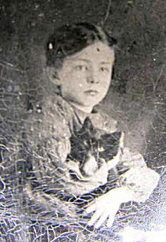 Victorian Cat Photograph 1870c