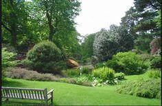 Heaselands Nursery Garden west sussex