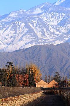 Fazer um Tour nas montanhas geladas de Mendoza, e beber excelentes vinhos. (convidar  Ramon e Rosilene)