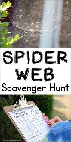 Look in corners, hard to reach places, and outside around the house on this spider web scavenger hunt. Includes free printable for students. Summer Camp Activities, Activities For Kids, Halloween Activities, Science Activities, Spider Games, Spider Web Game, Spiders For Kids, Charlottes Web Activities, School Scavenger Hunt