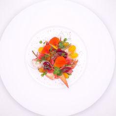 Oosterscheldekreeft, gepekelde groenten, mousse van beenham | Wouter Keersmaekers | De Schone Van Boskoop. Archiving Food Photography | Gastronomy