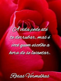 lc.artes Pasta, Words, Beautiful Red Roses, Motivational Quotes, Spirituality, Poems, Fotografia, Pasta Recipes, Pasta Dishes