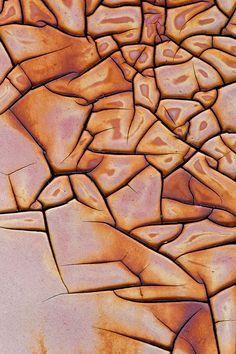 #Mud #cracks.