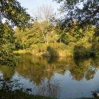 Park w Zwierzyńcu k. Park, Parks