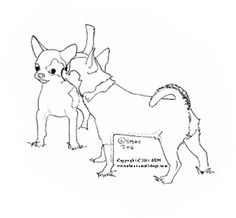 1000 images about coloring book on pinterest coloring for Chihuahua coloring pages free