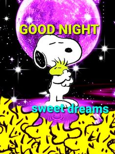 Good Night I Love You, Good Night Sleep Tight, Night Gif, Good Night Sweet Dreams, Good Night Image, Good Morning Good Night, Day For Night, Snoopy Images, Snoopy Pictures