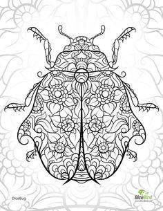 Ladybug Abstract Doodle Zentangle ZenDoodle Paisley Coloring pages colouring adult detailed advanced printable Kleuren voor volwassenen coloriage pour adulte anti-stress kleurplaat voor volwassenen
