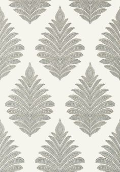 PALAMPORE LEAF, Grey, AT78724, Collection Palampore from Anna French