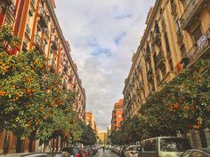 Colores En La Calle 🍊🇪🇸🔛🌳🍊 #calle #streetphotography #arbol 🌳🍊#orange #naranja #streets #sky #clouds #cars #photo #photography #live #day #photooftheday #december #valencia #socialnetwork #pinterest #instagram #tumblr #twitter #follow4follow #like4like followme #back #lifestyleblogger #goodmorning #live #hashtag #new
