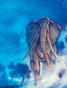 Cory Godbey #Elephant