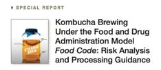 Kombucha Brewing Under the Food and Drug Administration Model Food Code: Risk Analysis and Processing Guiddelines Kombucha Mushroom, How To Brew Kombucha, Mushroom Tea, Fermented Tea, Probiotic Drinks, Risk Analysis, Brewing Tea, Ginger Beer, Food Service