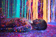 Artists Alex Markow and Magnus Sodamin had the phosphorescent paint party of your wildest dreams.