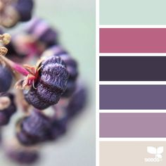 today's inspiration image for { nature hues } is by @tiniest_potato ... thank you, Kat, for sharing your incredible photo in #SeedsColor !