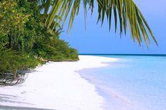 Embudu Village #Maldives #Budgetresorts #dreamdeals | For more details visit Travel Centre Maldives // www.travelcentremaldives.com // www.budgetresortsmaldives.com // info@tcmaldives.com